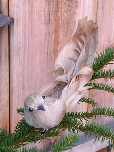 Bilde av Fugl krøllfjær beige