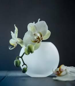 Bilde av Boblen lysestake/vase - Magnor