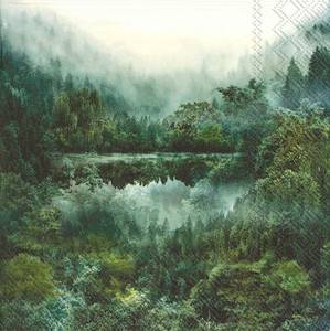 Bilde av Servietter lunsj Magic Forest